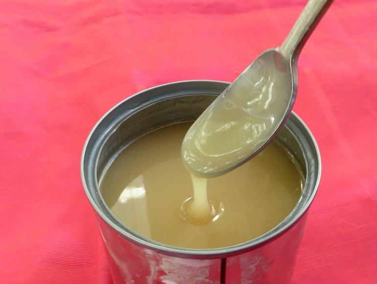Vegan dulche de leche