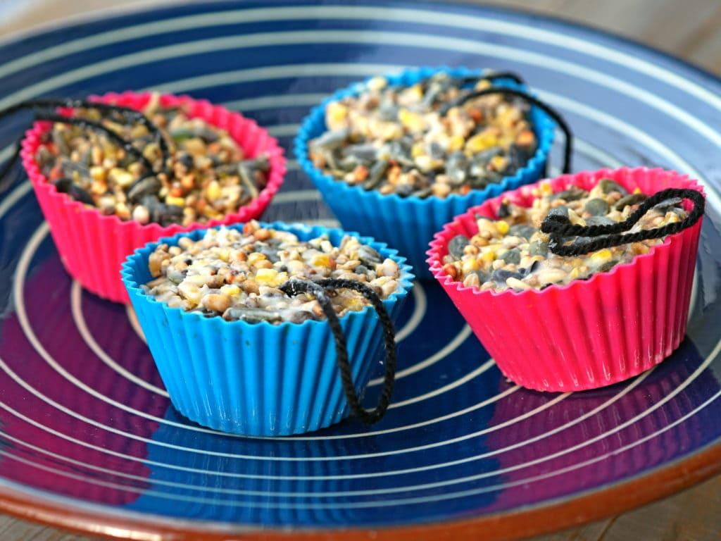 Vegan vetbollen vogelvoer muffinvormpjes