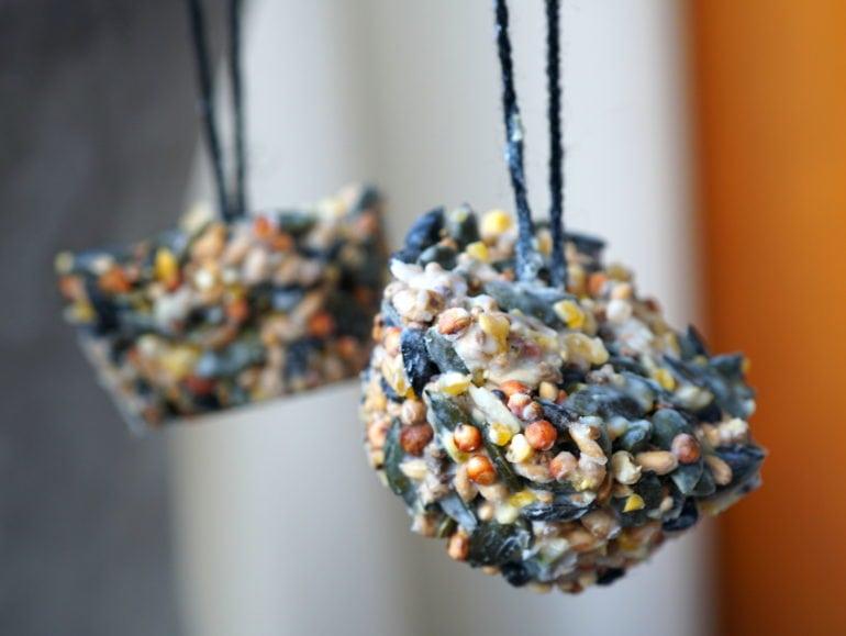 Vegan vetbollen muffinvormpje vogelvoer